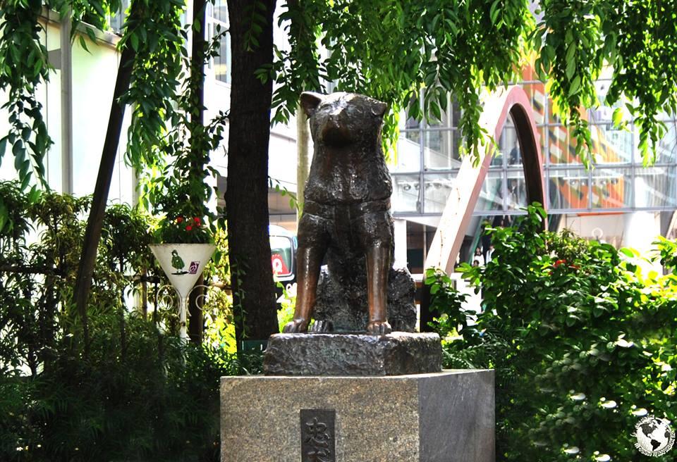 Hachiko: perro fiel, Japón