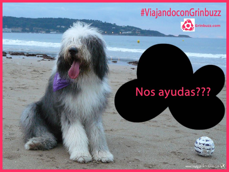 #ViajandoconGrinbuzz
