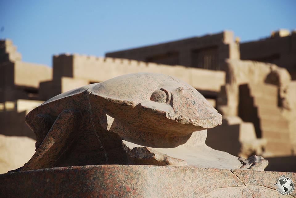 El escarabajo, Egipto