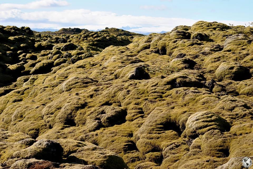 Campos de lava, Islandia