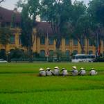 gorro vietnam