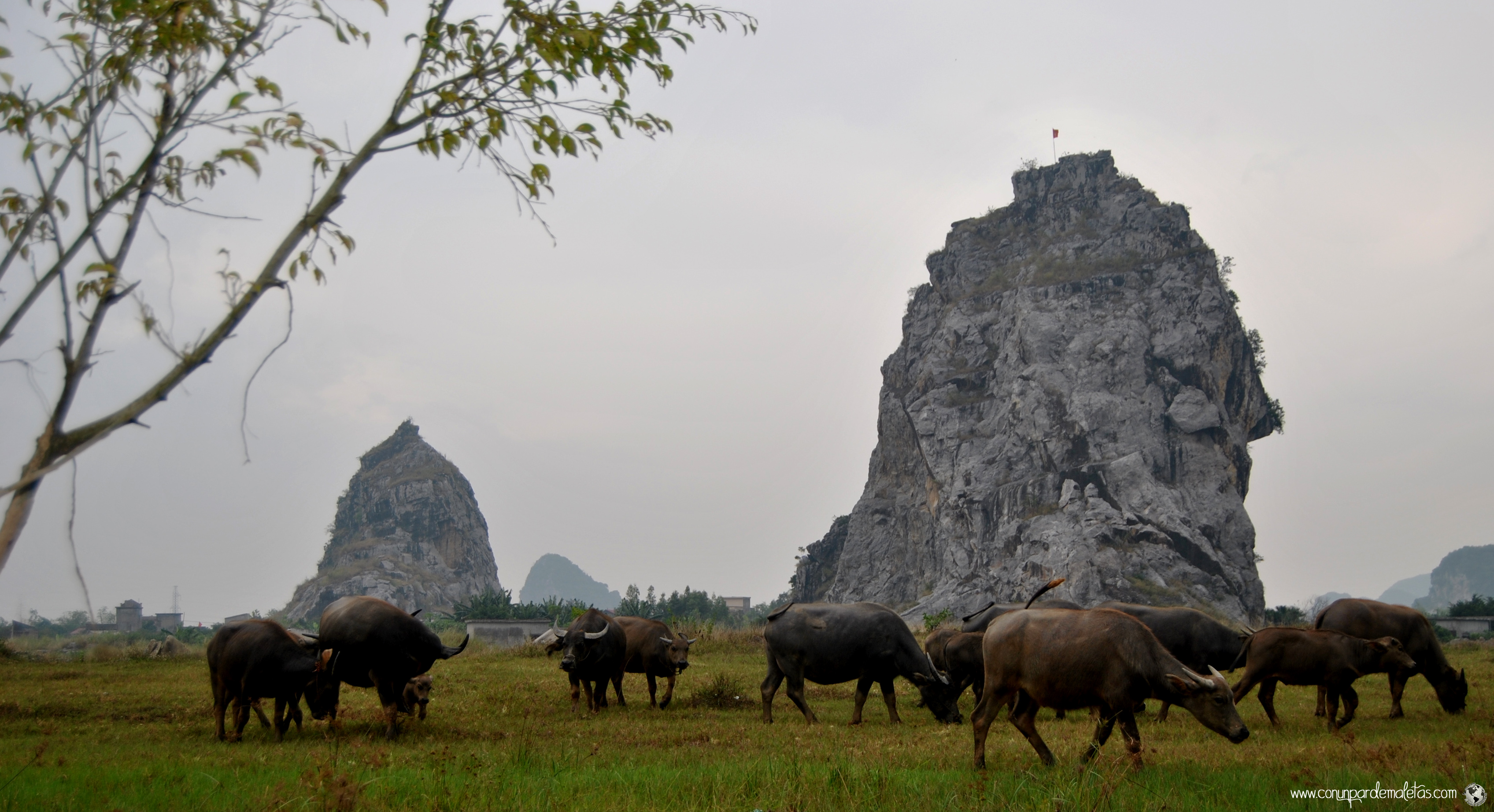 Formaciones Krásticas, Vietnam