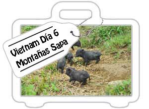 Vietnam día 6: Las montañas de Sapa