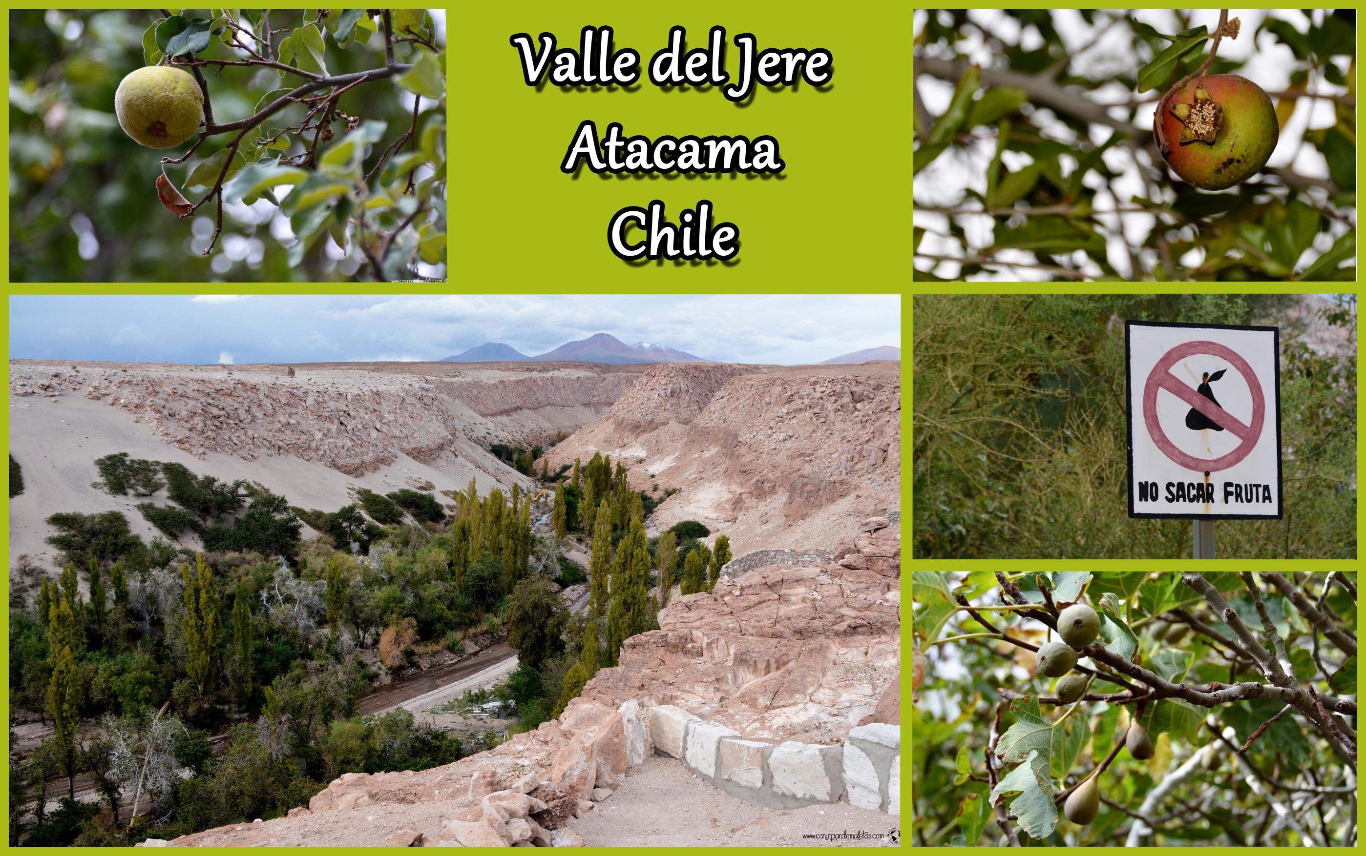 La Quebrada de Jere, Toconao. Chile