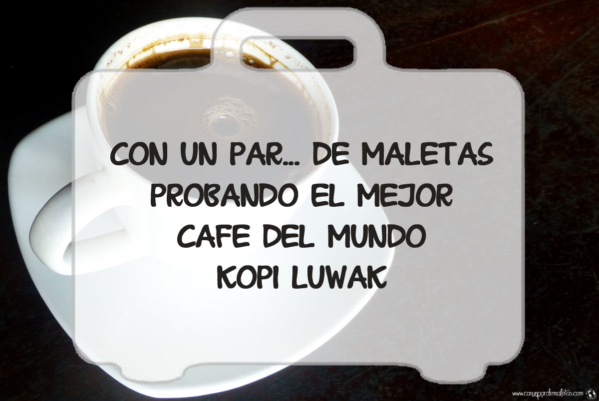 Kopi Luwak, probando el mejor café del mundo